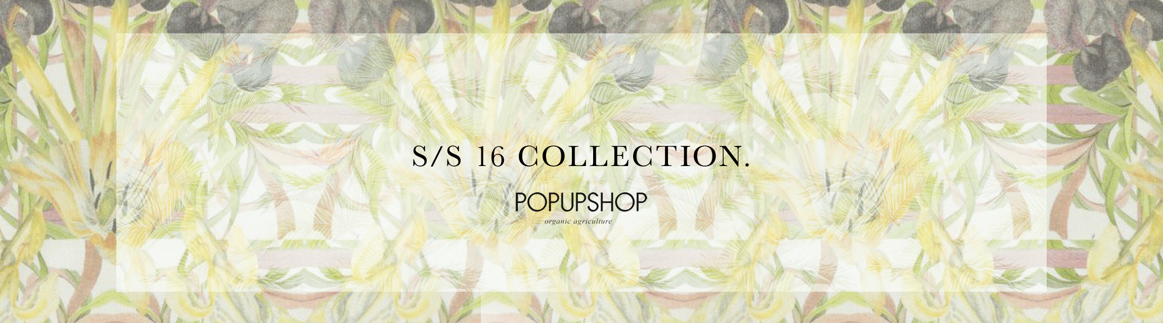 16ss popup